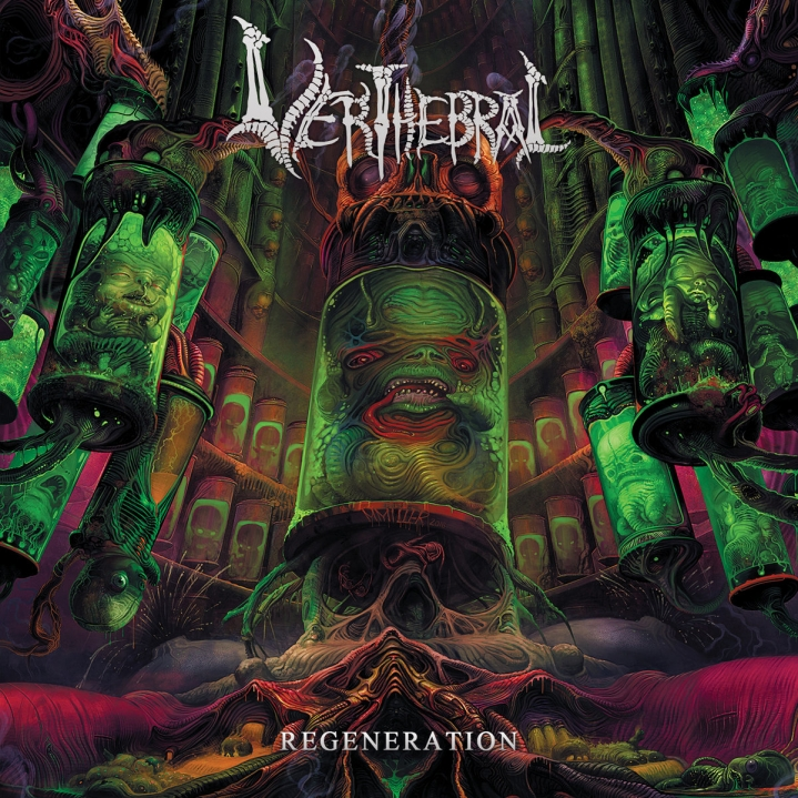 Verthebral — Regeneration